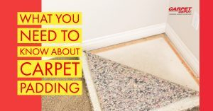 What You Need To Know About Carpet Padding