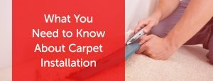 What You Need to Know About Carpet Installation