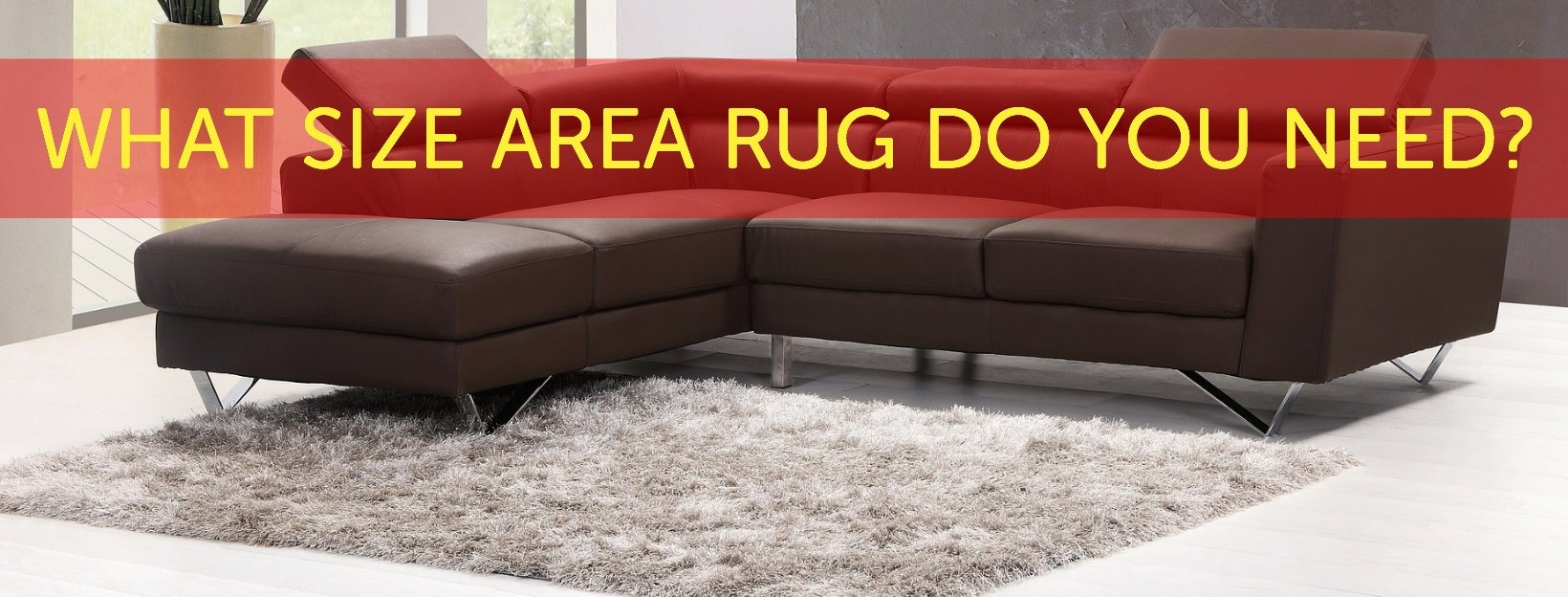 What Size Rug Do You Need? | Carpet Depot